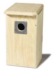 Flicker Nesting Box
